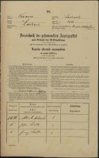 Popis prebivalstva 31. 12. 1869<br />Ljubljana<br />Mesto 256<br />Population census 31 December 1869
