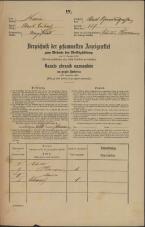 Popis prebivalstva 31. 12. 1869<br />Ljubljana<br />Mesto 257<br />Population census 31 December 1869