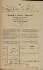 Popis prebivalstva 31. 12. 1869<br />Ljubljana<br />Mesto 259<br />Population census 31 December 1869