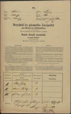 Popis prebivalstva 31. 12. 1869<br />Ljubljana<br />Mesto 261<br />Population census 31 December 1869
