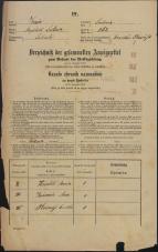 Popis prebivalstva 31. 12. 1869<br />Ljubljana<br />Mesto 262<br />Population census 31 December 1869