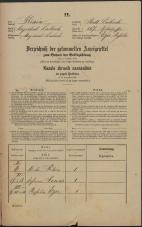 Popis prebivalstva 31. 12. 1869<br />Ljubljana<br />Mesto 267<br />Population census 31 December 1869