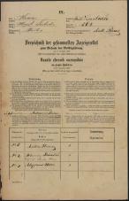 Popis prebivalstva 31. 12. 1869<br />Ljubljana<br />Mesto 268<br />Population census 31 December 1869