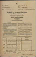Popis prebivalstva 31. 12. 1869<br />Ljubljana<br />Mesto 270<br />Population census 31 December 1869