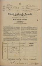 Popis prebivalstva 31. 12. 1869<br />Ljubljana<br />Mesto 272<br />Population census 31 December 1869