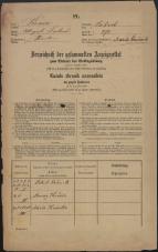 Popis prebivalstva 31. 12. 1869<br />Ljubljana<br />Mesto 275<br />Population census 31 December 1869