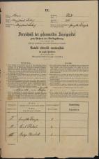 Popis prebivalstva 31. 12. 1869<br />Ljubljana<br />Mesto 276<br />Population census 31 December 1869