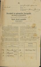 Popis prebivalstva 31. 12. 1869<br />Ljubljana<br />Gradišče 1<br />Population census 31 December 1869