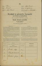 Popis prebivalstva 31. 12. 1869<br />Ljubljana<br />Gradišče 11<br />Population census 31 December 1869
