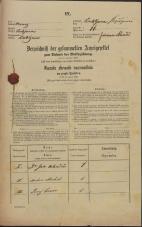 Popis prebivalstva 31. 12. 1869<br />Ljubljana<br />Kapucinsko predmestje 11<br />Population census 31 December 1869