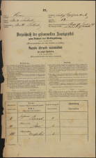 Popis prebivalstva 31. 12. 1869<br />Ljubljana<br />Kapucinsko predmestje 12<br />Population census 31 December 1869
