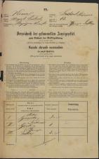 Popis prebivalstva 31. 12. 1869<br />Ljubljana<br />Kapucinsko predmestje 13<br />Population census 31 December 1869