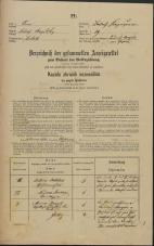 Popis prebivalstva 31. 12. 1869<br />Ljubljana<br />Kapucinsko predmestje 19<br />Population census 31 December 1869