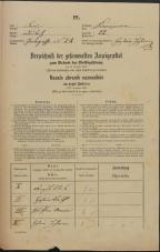 Popis prebivalstva 31. 12. 1869<br />Ljubljana<br />Kapucinsko predmestje 22<br />Population census 31 December 1869