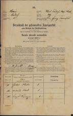 Popis prebivalstva 31. 12. 1869<br />Ljubljana<br />Kapucinsko predmestje 29<br />Population census 31 December 1869