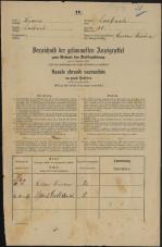 Popis prebivalstva 31. 12. 1869<br />Ljubljana<br />Kapucinsko predmestje 31<br />Population census 31 December 1869