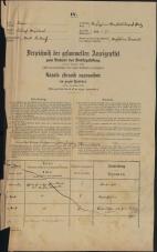 Popis prebivalstva 31. 12. 1869<br />Ljubljana<br />Kapucinsko predmestje 34<br />Population census 31 December 1869