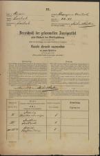 Popis prebivalstva 31. 12. 1869<br />Ljubljana<br />Kapucinsko predmestje 41<br />Population census 31 December 1869