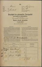 Popis prebivalstva 31. 12. 1869<br />Ljubljana<br />Kapucinsko predmestje 47<br />Population census 31 December 1869