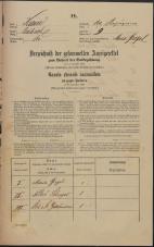 Popis prebivalstva 31. 12. 1869<br />Ljubljana<br />Kapucinsko predmestje 9<br />Population census 31 December 1869