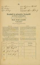 Popis prebivalstva 31. 12. 1869<br />Ljubljana<br />Kapucinsko predmestje 51<br />Population census 31 December 1869