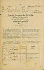 Popis prebivalstva 31. 12. 1869<br />Ljubljana<br />Kapucinsko predmestje 69<br />Population census 31 December 1869