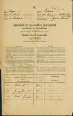 Popis prebivalstva 31. 12. 1869<br />Ljubljana<br />Kapucinsko predmestje 70<br />Population census 31 December 1869