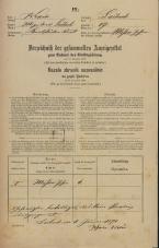Popis prebivalstva 31. 12. 1869<br />Ljubljana<br />Karlovško predmestje 17<br />Population census 31 December 1869