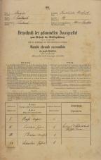 Popis prebivalstva 31. 12. 1869<br />Ljubljana<br />Karlovško predmestje 19<br />Population census 31 December 1869