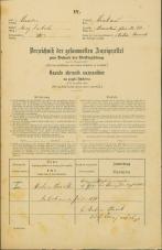 Popis prebivalstva 31. 12. 1869<br />Ljubljana<br />Krakovsko predmestje 33<br />Population census 31 December 1869