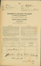 Popis prebivalstva 31. 12. 1869<br />Ljubljana<br />Krakovsko predmestje 48<br />Population census 31 December 1869