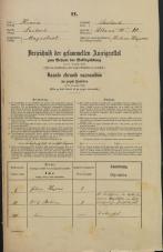 Popis prebivalstva 31. 12. 1869<br />Ljubljana<br />Poljansko predmestje 10<br />Population census 31 December 1869