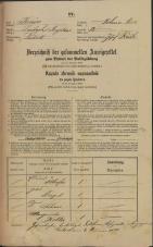 Popis prebivalstva 31. 12. 1869<br />Ljubljana<br />Poljansko predmestje 12<br />Population census 31 December 1869