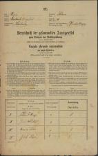 Popis prebivalstva 31. 12. 1869<br />Ljubljana<br />Poljansko predmestje 17<br />Population census 31 December 1869
