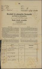 Popis prebivalstva 31. 12. 1869<br />Ljubljana<br />Poljansko predmestje 19<br />Population census 31 December 1869