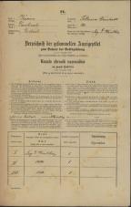 Popis prebivalstva 31. 12. 1869<br />Ljubljana<br />Poljansko predmestje 20<br />Population census 31 December 1869