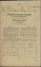 Popis prebivalstva 31. 12. 1869<br />Ljubljana<br />Poljansko predmestje 21<br />Population census 31 December 1869