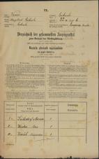 Popis prebivalstva 31. 12. 1869<br />Ljubljana<br />Poljansko predmestje 22<br />Population census 31 December 1869