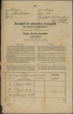 Popis prebivalstva 31. 12. 1869<br />Ljubljana<br />Poljansko predmestje 24<br />Population census 31 December 1869