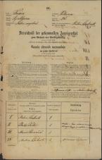 Popis prebivalstva 31. 12. 1869<br />Ljubljana<br />Poljansko predmestje 25<br />Population census 31 December 1869