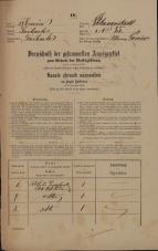 Popis prebivalstva 31. 12. 1869<br />Ljubljana<br />Poljansko predmestje 85<br />Population census 31 December 1869