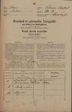 Popis prebivalstva 31. 12. 1869<br />Ljubljana<br />Poljansko predmestje 89<br />Population census 31 December 1869