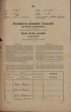 Popis prebivalstva 31. 12. 1869<br />Ljubljana<br />Poljansko predmestje 96<br />Population census 31 December 1869