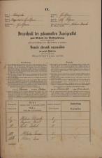 Popis prebivalstva 31. 12. 1869<br />Ljubljana<br />Poljansko predmestje 97<br />Population census 31 December 1869