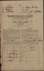 Popis prebivalstva 31. 12. 1869<br />Ljubljana<br />Poljansko predmestje 98<br />Population census 31 December 1869