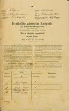 Popis prebivalstva 31. 12. 1869<br />Ljubljana<br />Svetega Petra predmestje 1<br />Population census 31 December 1869