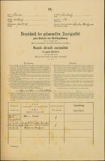 Popis prebivalstva 31. 12. 1869<br />Ljubljana<br />Svetega Petra predmestje 14<br />Population census 31 December 1869