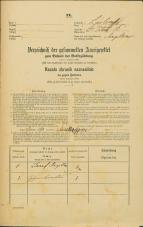 Popis prebivalstva 31. 12. 1869<br />Ljubljana<br />Svetega Petra predmestje 16<br />Population census 31 December 1869