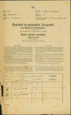 Popis prebivalstva 31. 12. 1869<br />Ljubljana<br />Svetega Petra predmestje 23<br />Population census 31 December 1869
