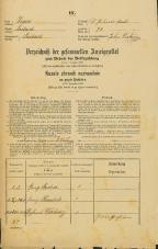 Popis prebivalstva 31. 12. 1869<br />Ljubljana<br />Svetega Petra predmestje 28<br />Population census 31 December 1869